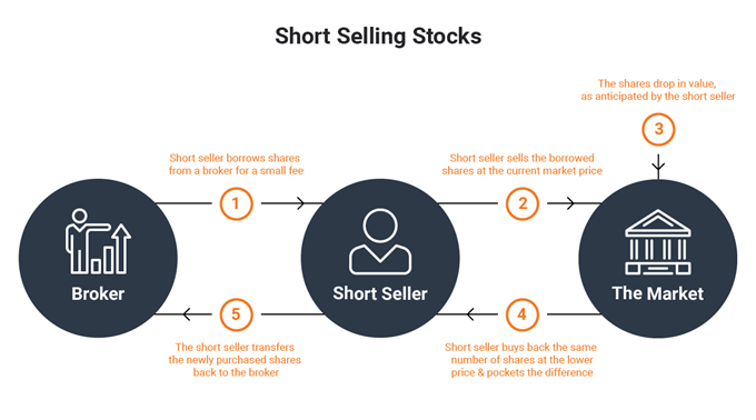 Who Needs Short-Sellers? The Markets NEED Short-Sellers!