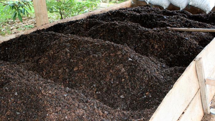 Or, pétrole, cacao : L'hebdo des matières premières