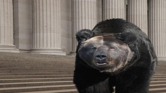 Wall Street se hunde por temor a pandemia del coronavirus