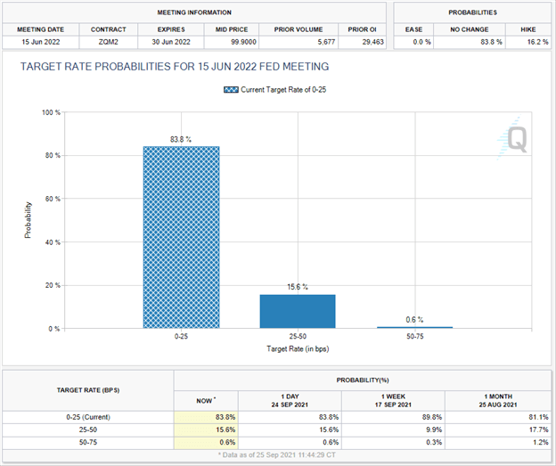 cme group fed tool, rate bets