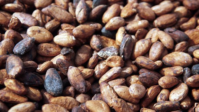 Or, cuivre, pétrole, cacao : L'hebdo des matières premières