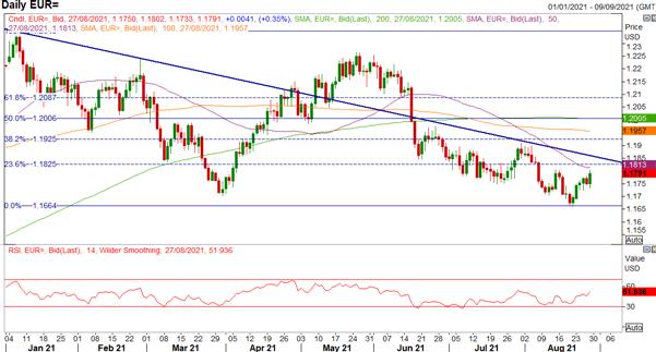 Euro Runs into Resistance, More Gains Ahead?
