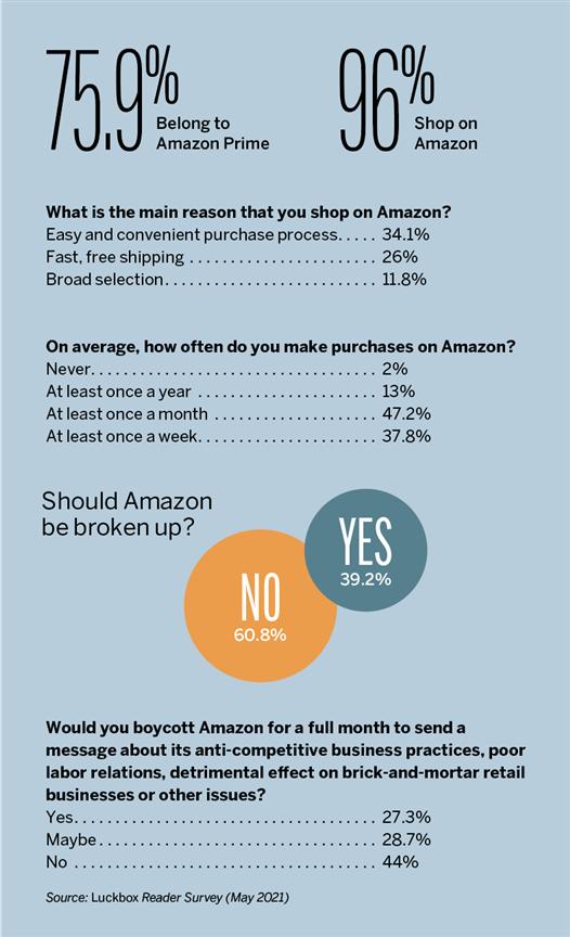 Surveying the Amazon