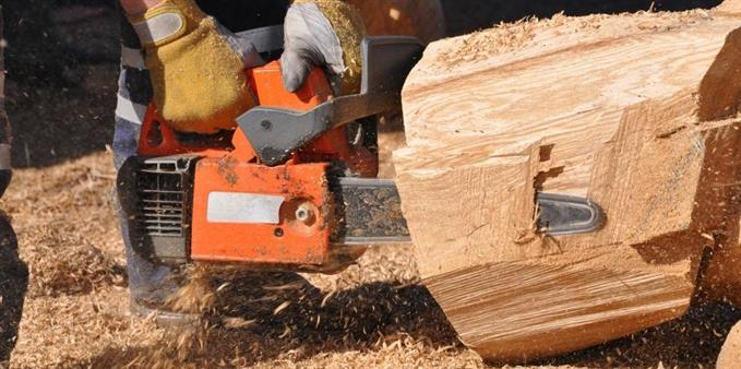 Vật liệu cơ bản để chặt gỗ