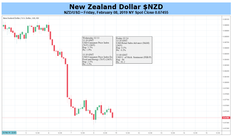 New Zealand Dollar Fundamental Forecast Bearish