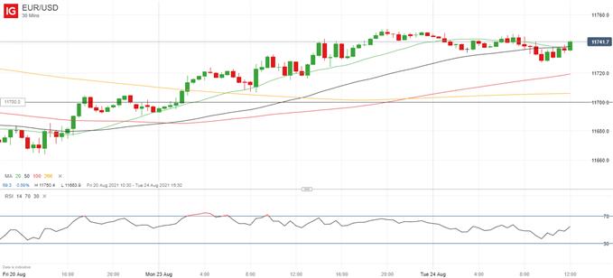Market Sentiment Data Still Bullish for EUR/USD