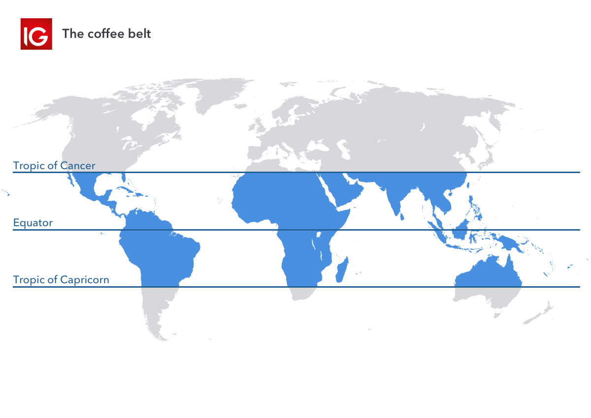 The coffee belt shows where coffee is traded in the world