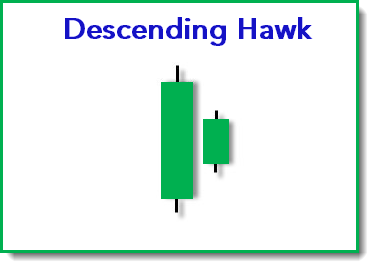 Descending Hawk