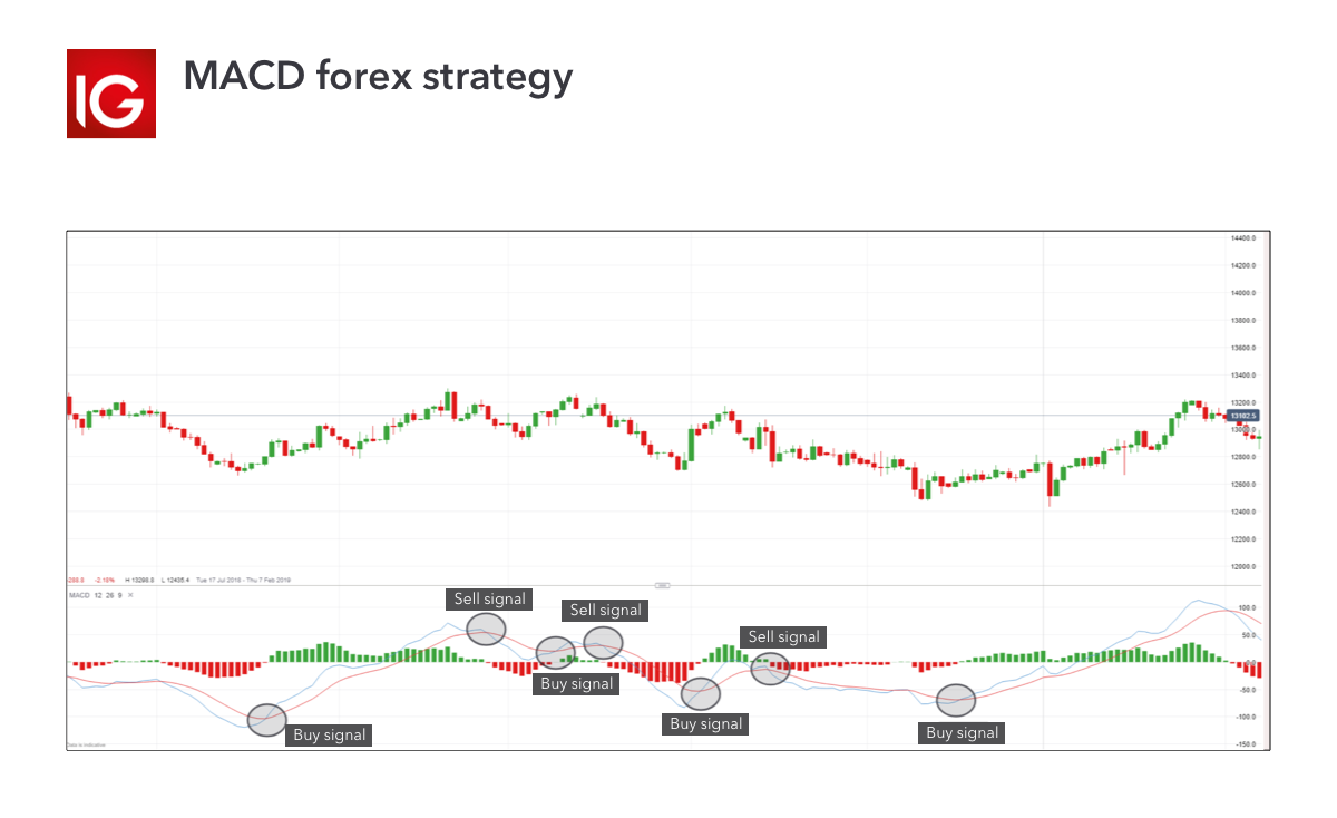 MACD forex strategy
