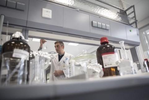 bb3d21dcfb Azioni Bayer a picco. Nuove accuse su Roundup (Monsanto) per l'insorgere del  cancro